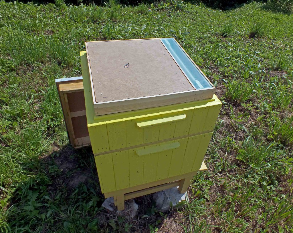bičių maitinimas
