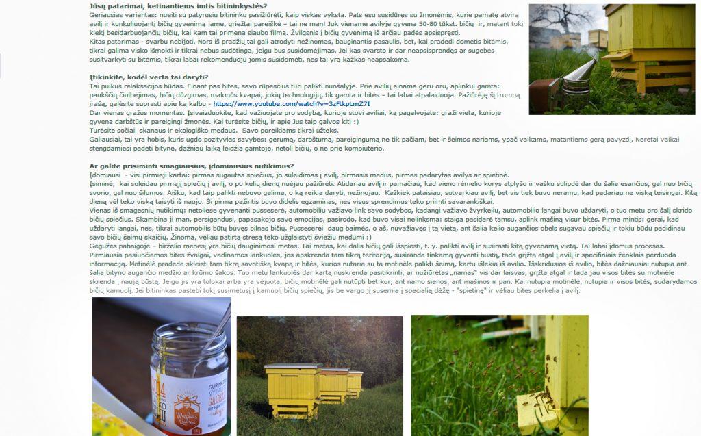 interviu apie bites 3